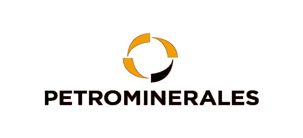 Petrominerales2
